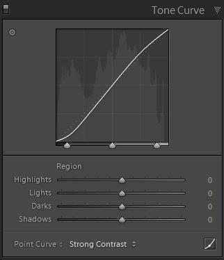 Tone curve panel