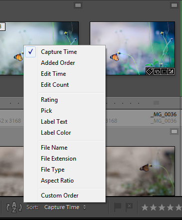 Lightroom-Sort order
