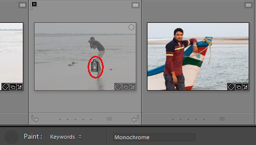 The most powerful toolbar in Lightroom-Painter tool